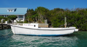 Boat in Man O War Harbor