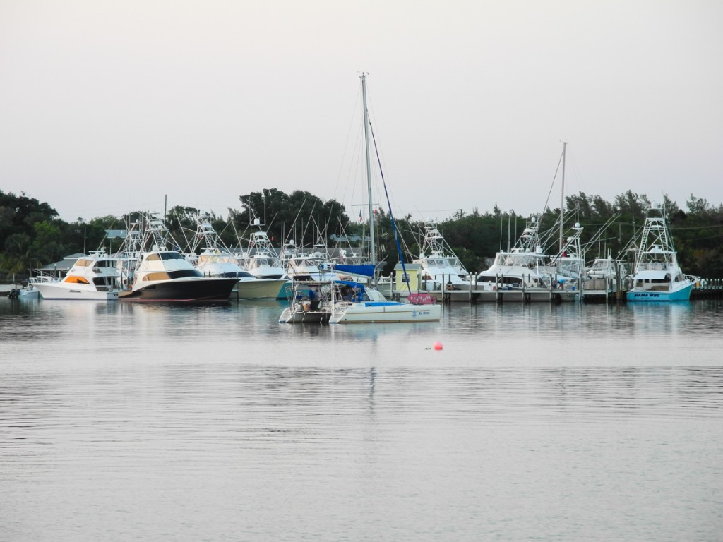 Fishing Boats at Green Turtle club